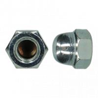 D1587 |6| HEXAGON DOMED CAP NUT ZP M22 (10)